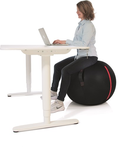 Gymstick Office Ball - 75 cm - Met Online Trainingsvideo's-3