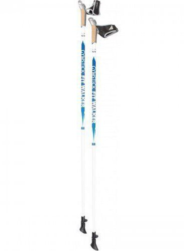 Gymstick Fit Walker Nordic Walking stokken