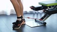 BH Fitness X.Forte Trainingsbank-2