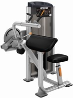 Precor Tricep Extension-1