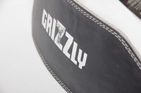 Grizzly-CS6