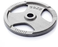 Gietijzer schijf 20 kg (50 mm)-3
