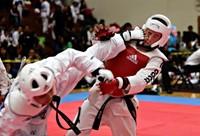 Taekwondo adidas bodyprotector