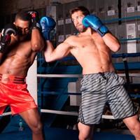 Adidas Training MMA Short Grijs Beluga-3
