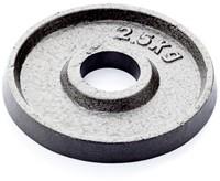 Gietijzer schijf 2.5 kg (50 mm)-1