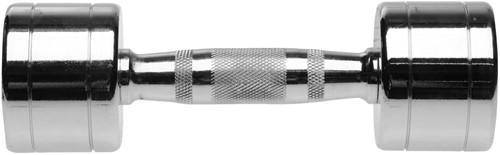 Chrome Dumbbell - 27,5 kg