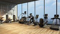 Life Fitness Platinum Club Explore Flexstrider - Gratis montage-3