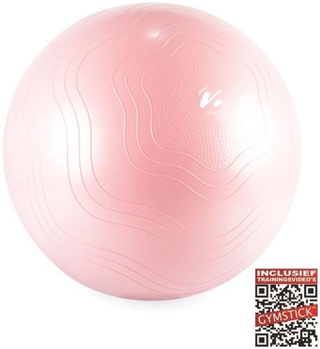 Gymstick Vivid Fitness Ball - Gymbal - Roze - 75 cm - Met Online Trainingsvideo's